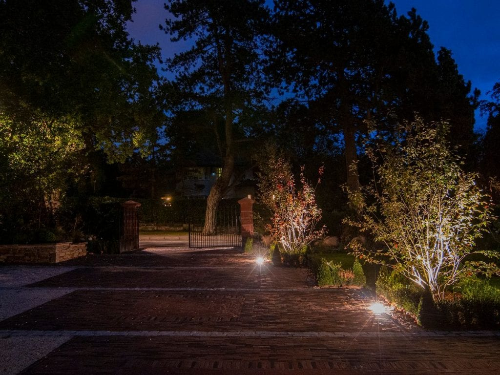 exterior lighting across clay brick driveway and under lighting of amalenchier lamarckii within box hedge