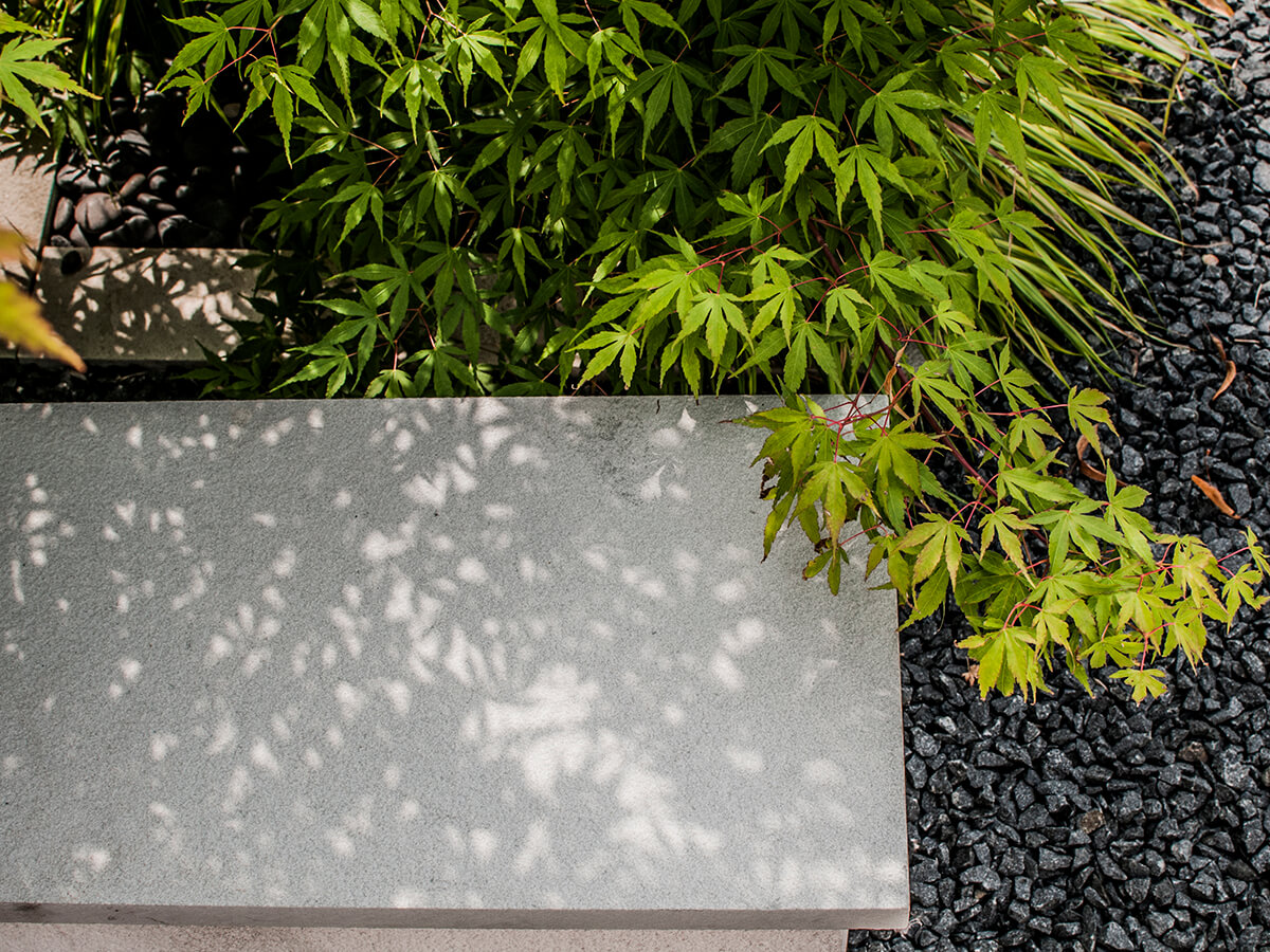 acer, black basalt gravel, stone coping, washed pebbles, japanese forest grass