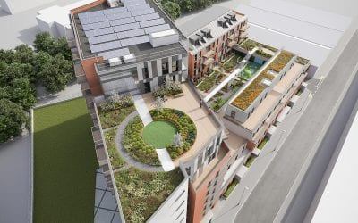 Why Consider a Roof Garden?