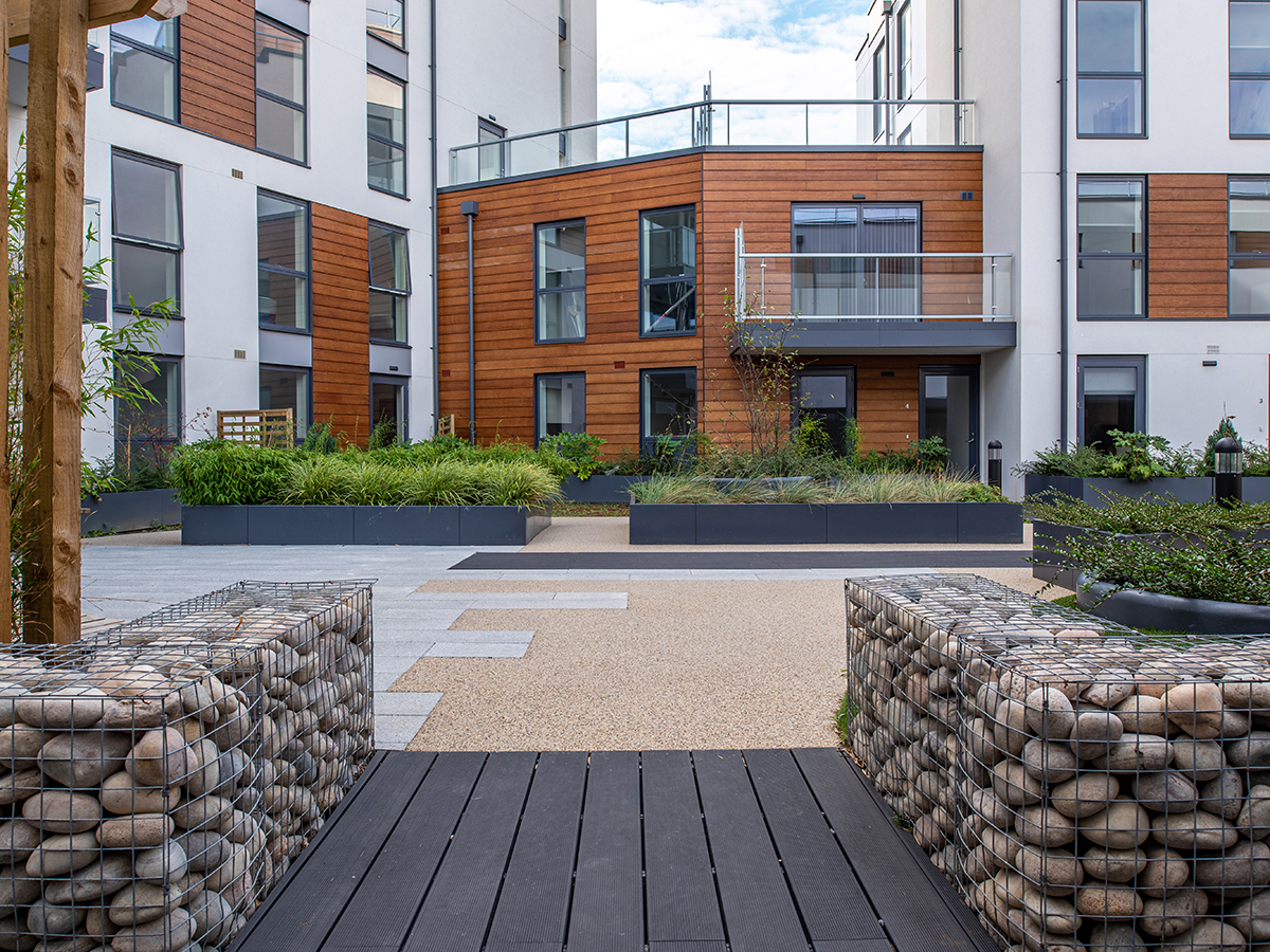 gabion wall and raised planters with carex and bamboo and cedar panels on building