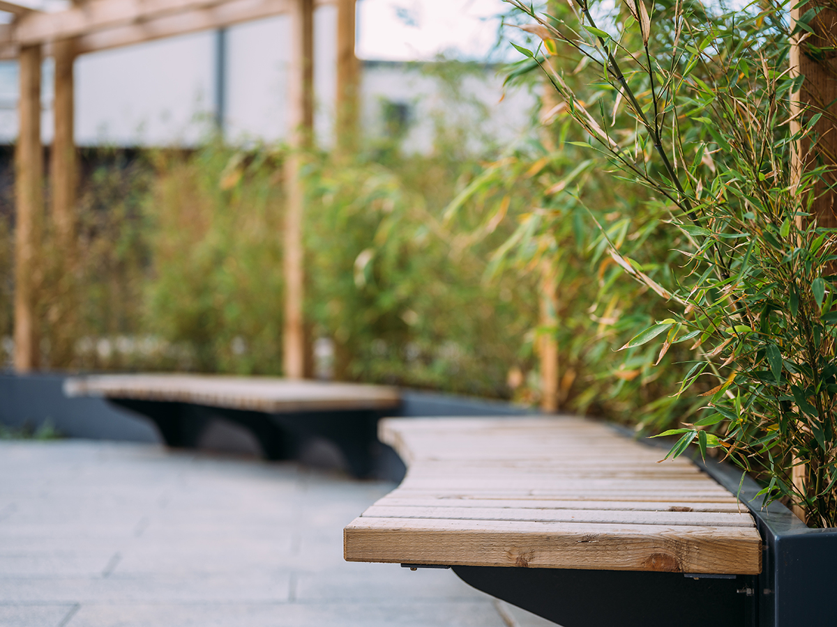 cantilever seat slats on raised planter with bamboo screening