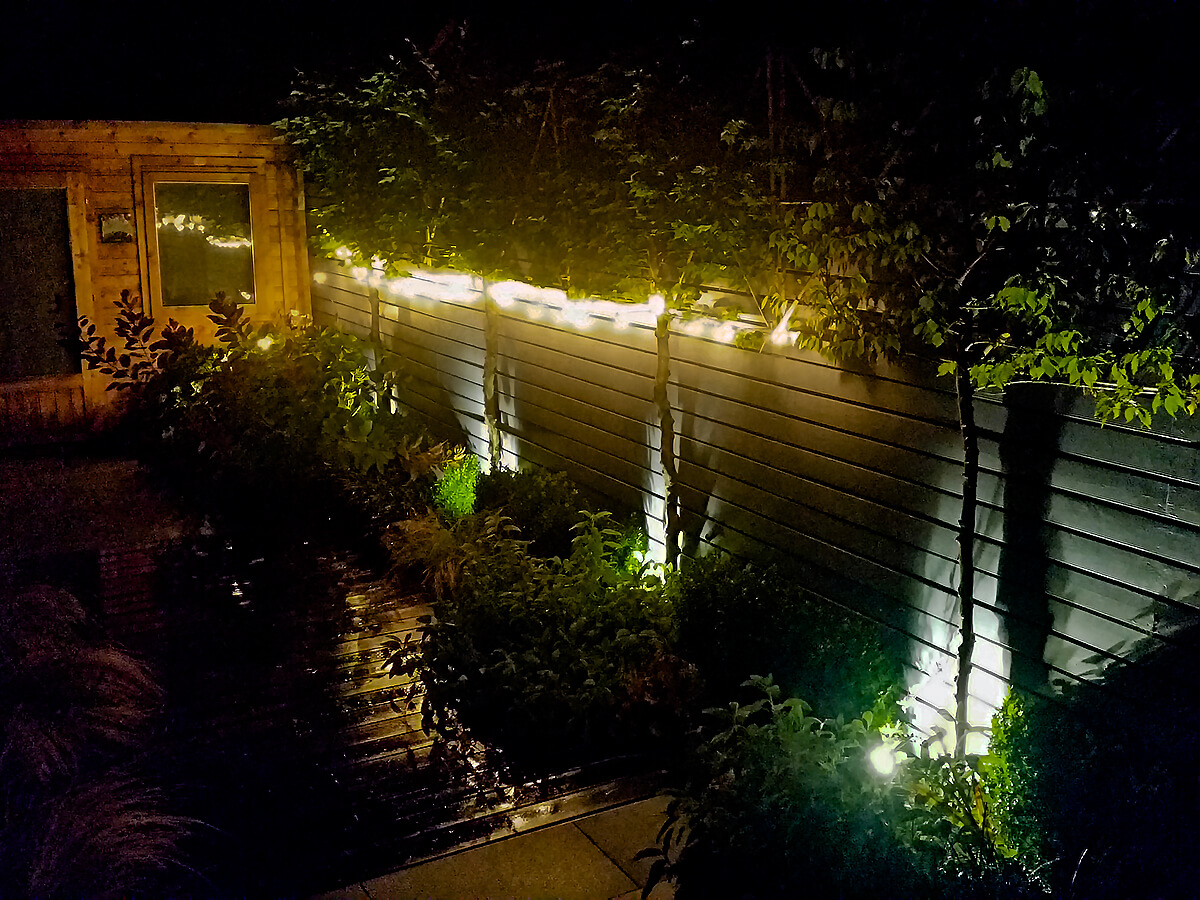 pleached tree uplights and fairy lights on pleached hornbeam with lighting reflections on decking