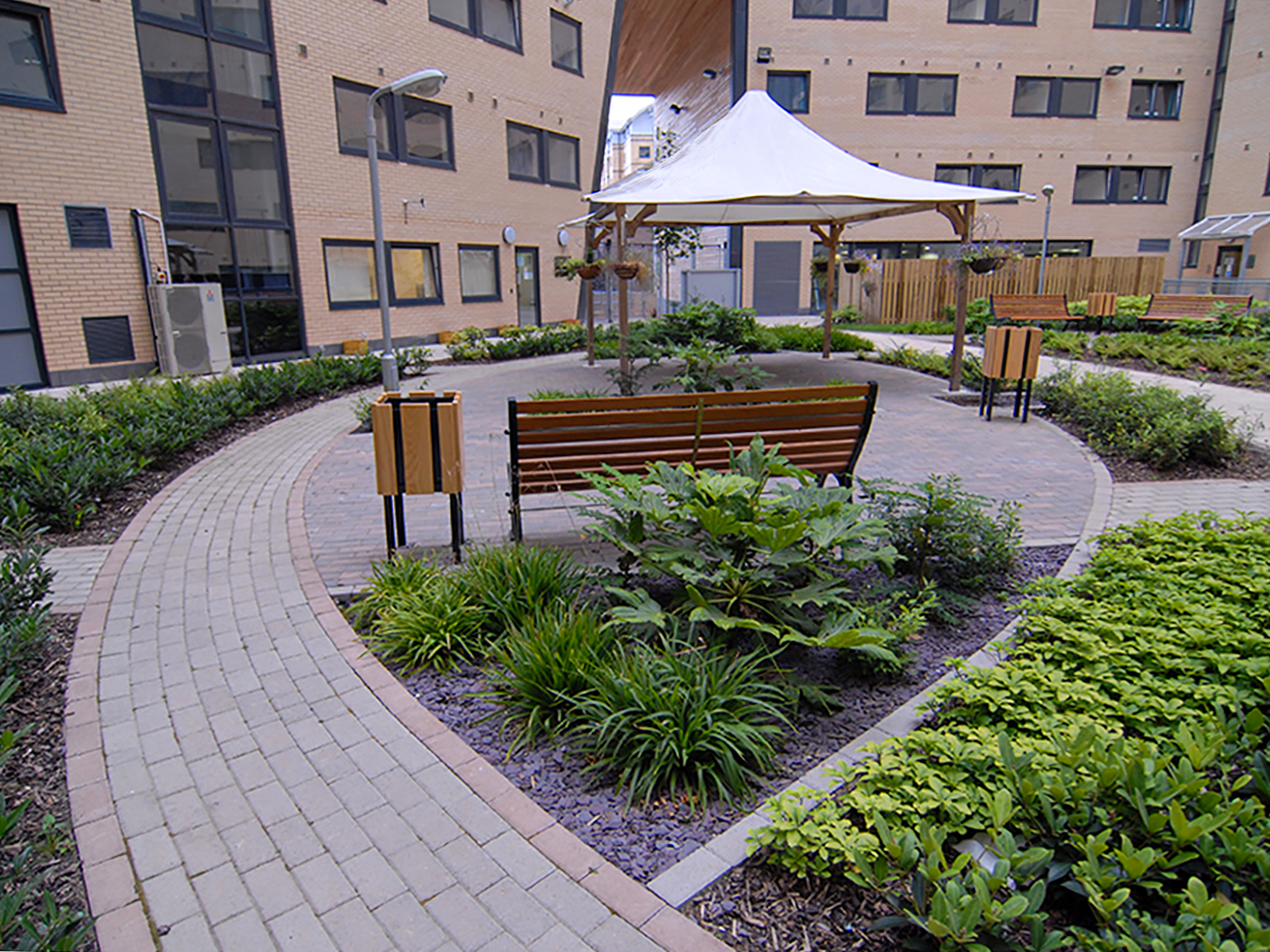 Marsden House view of spine with curved paving, meeting canopy and shade tolerant planting palette.