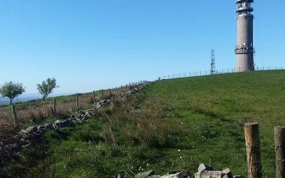 'REASSURINGLY ROBUST'  LANDSCAPE AND VISUAL IMPACT ASSESSMENT REPORT HELPS WIFI TELECOM MAST SECURE PLANNING PERMISSION